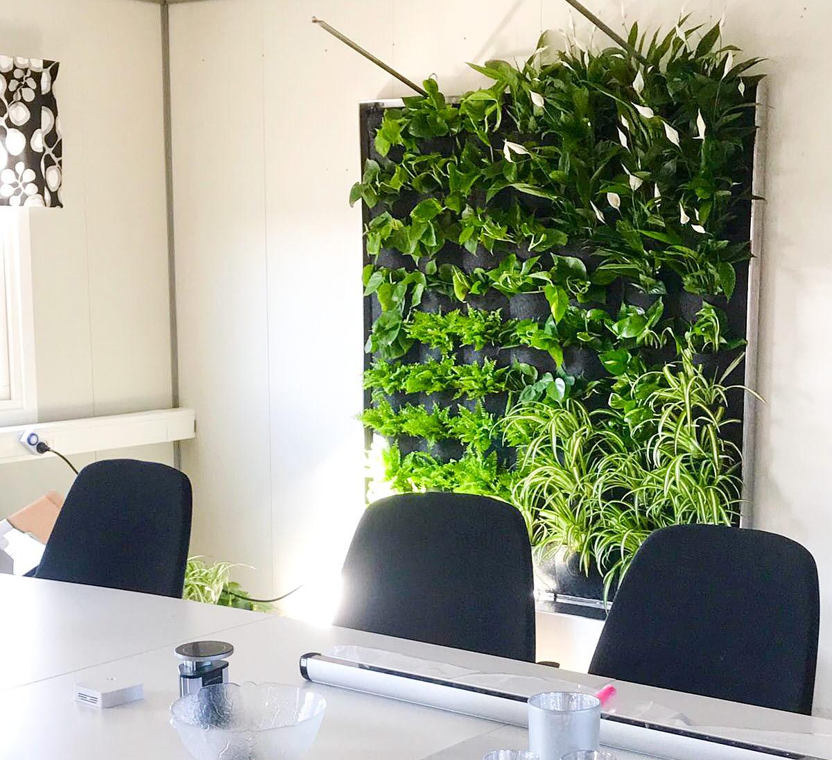 Växtvägg på Tekniska Verken i Kiruna